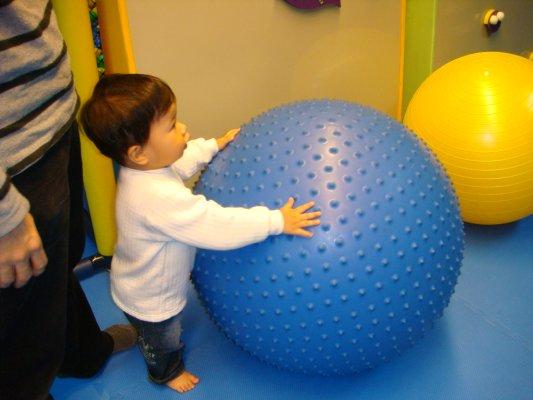 看到家裡一樣的大球竟然要玩...家裡的卻不玩