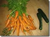 08-23-08 Garden Harvesting 005
