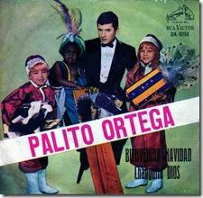 palito1