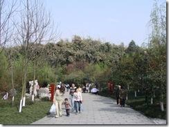 huanhuaxi003