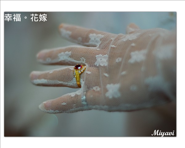 DSC_1049by miyavi.jpg