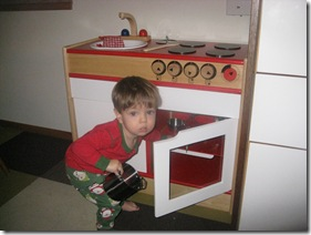 oven inspection